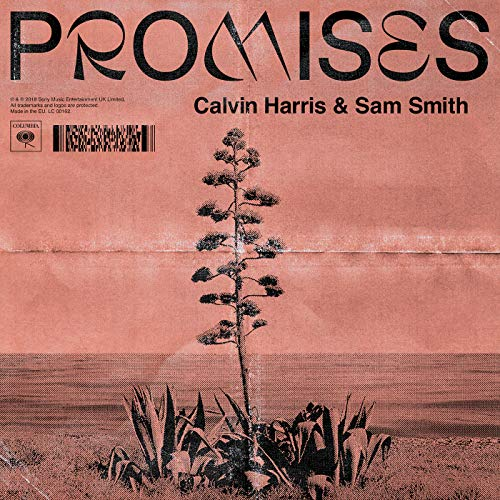 Calvin Harris, Sam Smith mit Promises